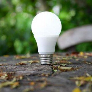 eco ledlampen